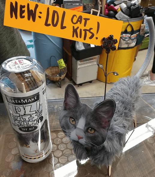 LOL Cat Kit